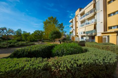 Ground floor en Santa Ponsa - 50578