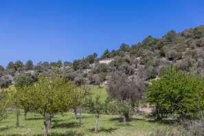 Country house en Mancor de la Vall - 8111